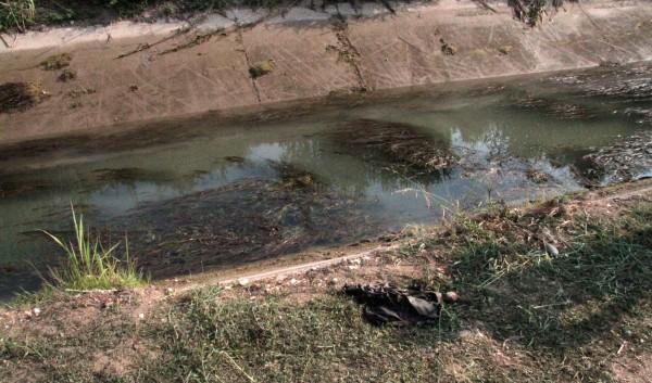 Το σημείο που ανασύρθηκαν νεκρά τα 2 παιδάκια ΦΩΤΟ EUROKINISSI