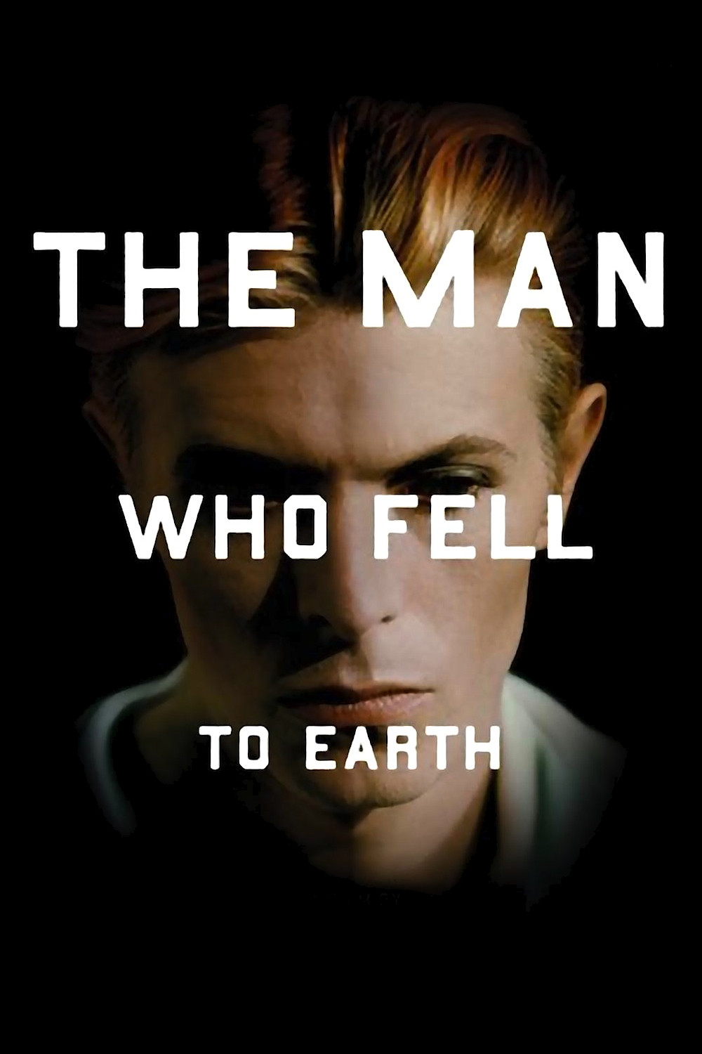the_man_who_fell_to_earth_original