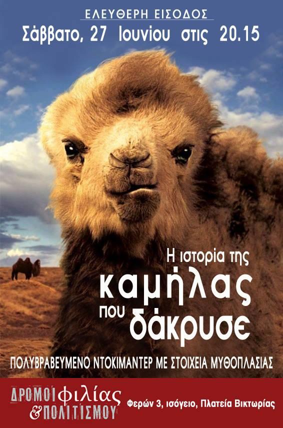 i istoria tis kamilas pou dakryse poster dromoi filias kai politismou
