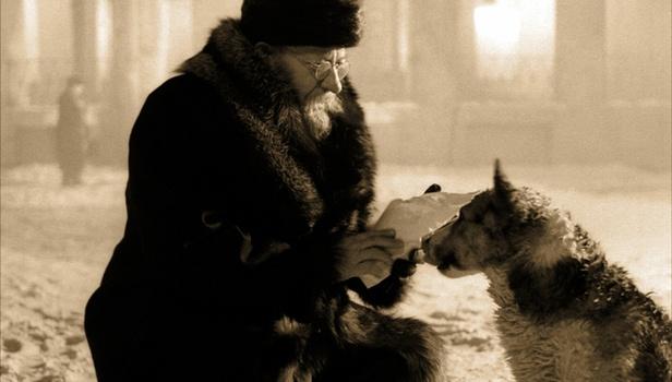 Sobachye Serdtse Heart of a Dog