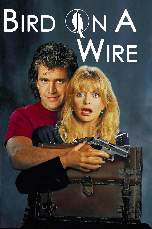 bird-on-a-wire.